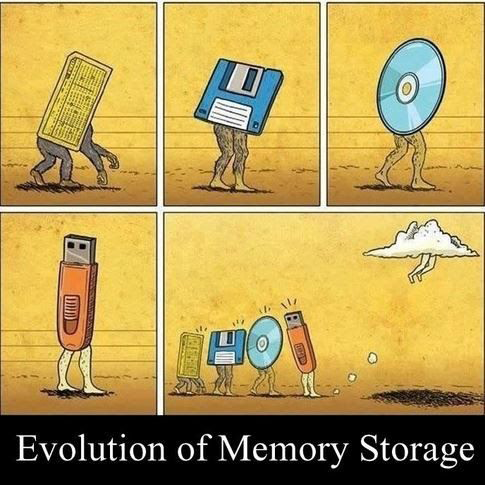 Evolution of Memory
